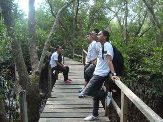 Hutan mangrove sebagai tempat wisata